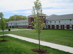 Green space between buildings