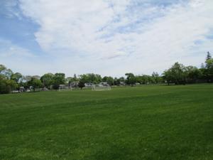 School sports field