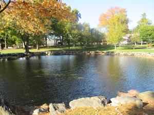 A campus pond