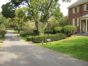Roadway leading into campus