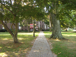 Pathway running through courtyard