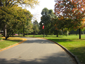 Roadway leading to campus
