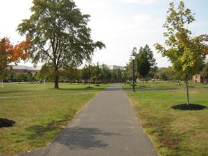 Pathway cutting through campus