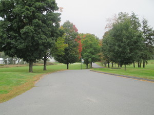 Driveway leading from campus