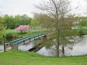 A walkway over a pond