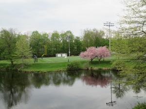 View of the sports field