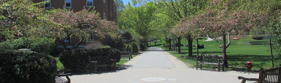 佛蒙特学院